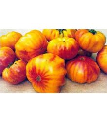 More about Rajče dvoubarevné- semena rajčete - původní odrůdy rajčat - 6 ks