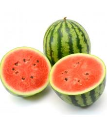 Meloun vodní Crimstar F1 - Citrullus lanatus - osivo melounu - 6 ks