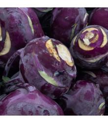 More about BIO kedluben Azur - Brassica Oleracea L. - bio osivo kedlubny - 50 ks