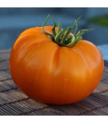 More about Rajče Wellington F1 - Solanum lycopersicum - osivo rajčat - 7 ks