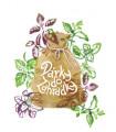 Bazalky do Vaší kuchyně - 7 nejoblíbenějších druhů bazalky
