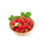 Semena jahodníku